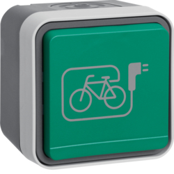 47403533 SCHUKO socket outlet with green hinged cover and imprinted symbol e-bike Berker W.1, grey/light grey matt