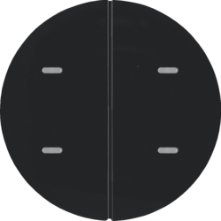 80162865 Push-button 2gang and RGB LED,  with integrated temperature sensor,  KNX - Berker R.1/R.3/Serie 1930/R.classic,  black glossy
